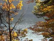 Foto: Herbst 2019 © Siegfried Preiml