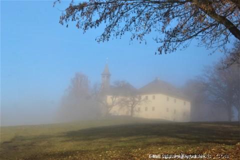 Foto: 15.11.2020 © Siegfried Preiml